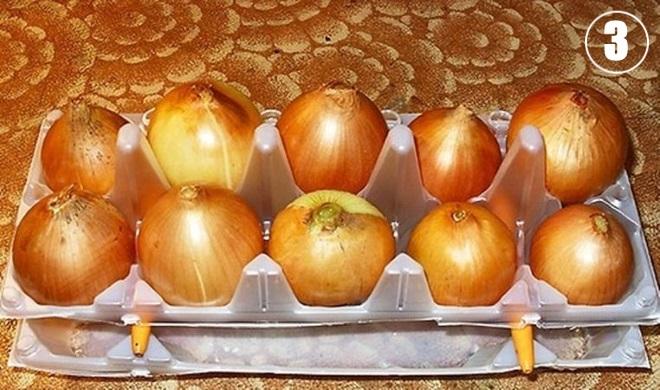 Луковицы в контейнере от яиц
