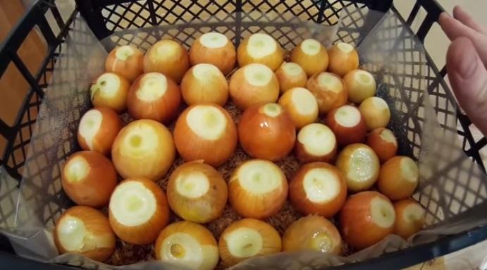 Посадка луковиц в опилки