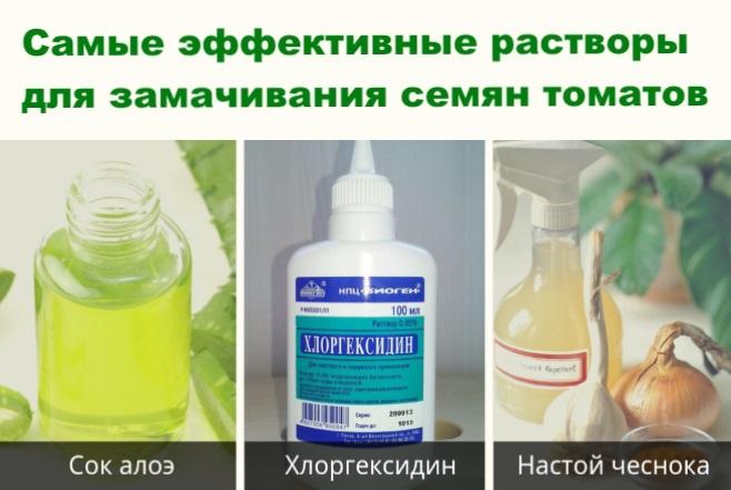 Топ-3 растворов для замачивания семян помидор