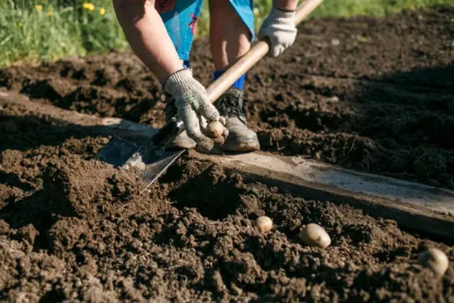 Копание траншеи лопатой