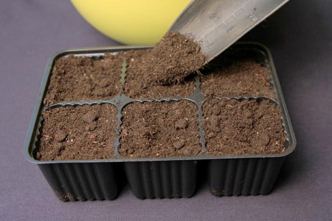 Почвосмесь для петунии