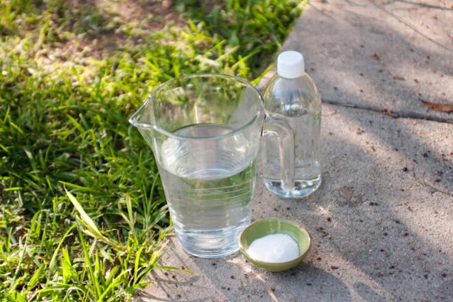 Соль и уксус от одуванчиков