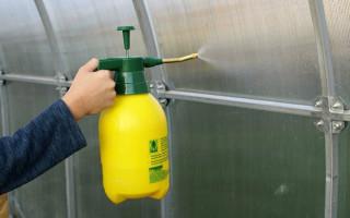 Весенняя обработка теплицы из поликарбоната от болезней и вредителей