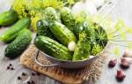 Хрустящие малосольные огурцы в кастрюле: классические рецепты