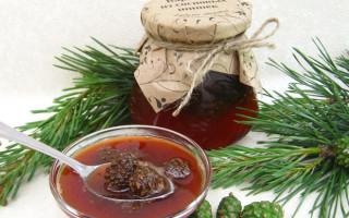 Варенье из сосновых шишек: 9 рецептов