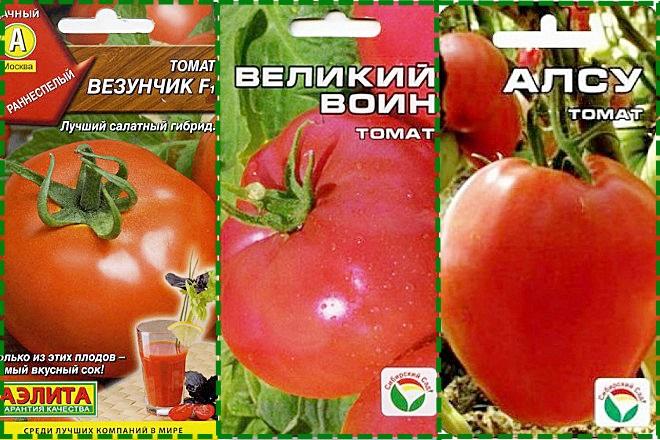Плодовитые сорта томатов