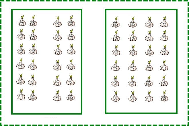 Схема посадки бульбочками